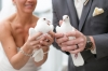 coastal-room_candace-and-jason_the-yacht-club-at-marina-shores-amanda-hedgepth-photography_dove-release-wedding_0
