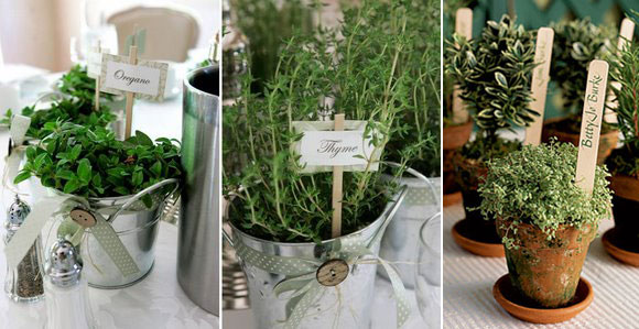 Potted Plants Wedding Decor